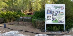 shekef-uri-zackhem