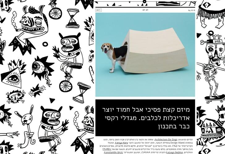 מגזין Re-Design בעיצוב feelternet