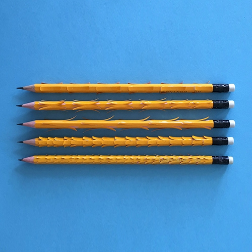 עומר פולק - מפגש בין יפנית לעיפרון