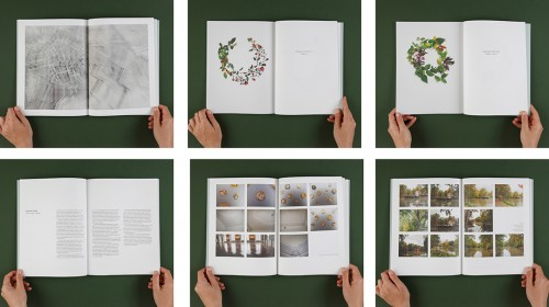ספר אמן לדנה יואלי